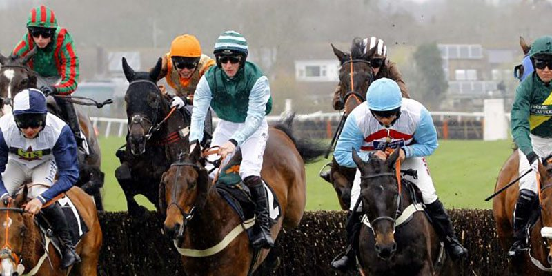 Raceday Review 15th April - Plumpton Racecourse