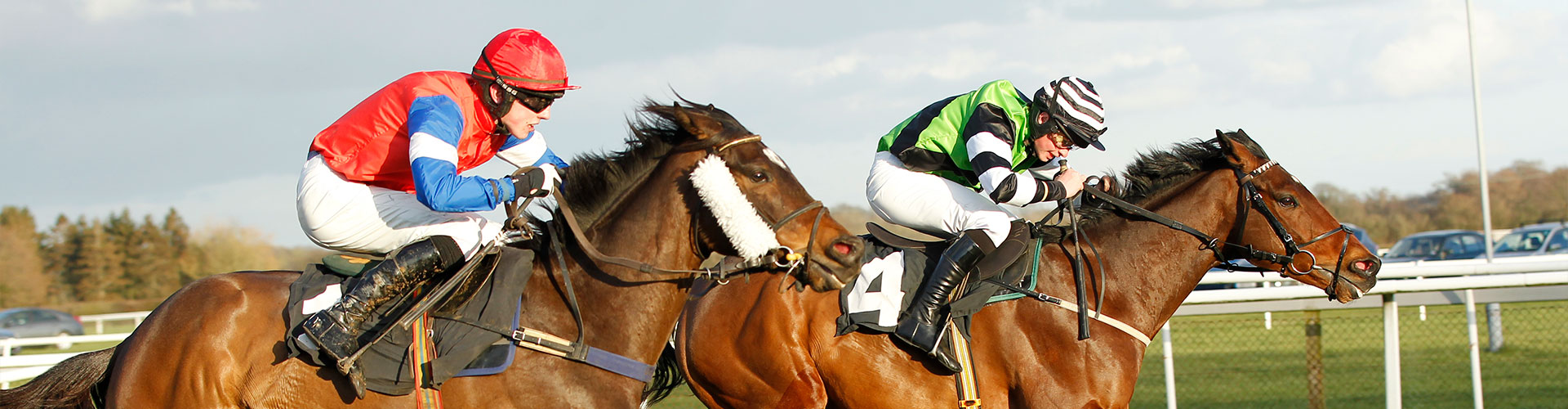 How to find is at Plumpton Racecourse