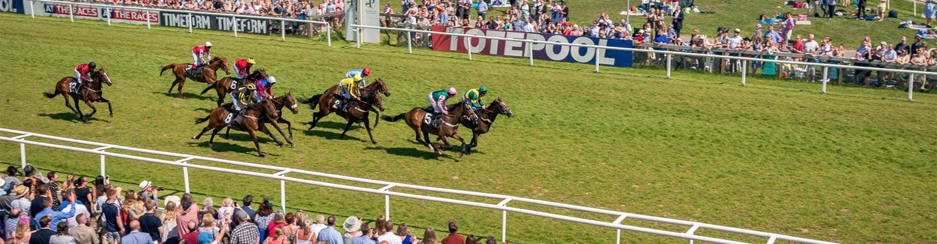 Private Suite at Plumpton Racecourse